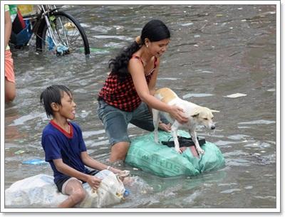 Dogilike.com :: โลกซึ้ง! ฟิลิปปินส์ส์พายุซัด ไม่หวั่นช่วยสุนัขหนีน้ำ