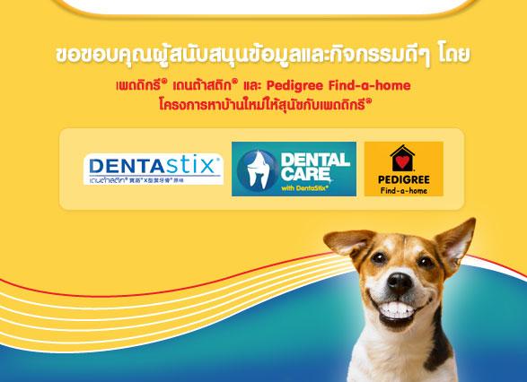ดูแลฟัน สุนัข, ดูแลเหงือก สุนัข, แปรงฟัน สุนัข, ขนมสุนัข ขัดฟัน,  เดนต้าสติก, เพดดิกรี, หินปูน, ซิงค์ ซัลเฟต, เอสทีทีพี, dog smile month