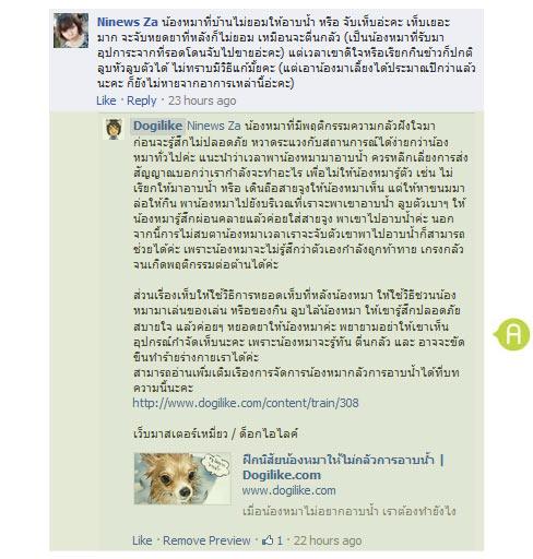 dog close-up, infographic, dog infographic, หมา, สุนัข, กู้ชีพน้องหมา, ปั้มหัวใจ, ตรวจชีพจร ,โรงพยาบาล