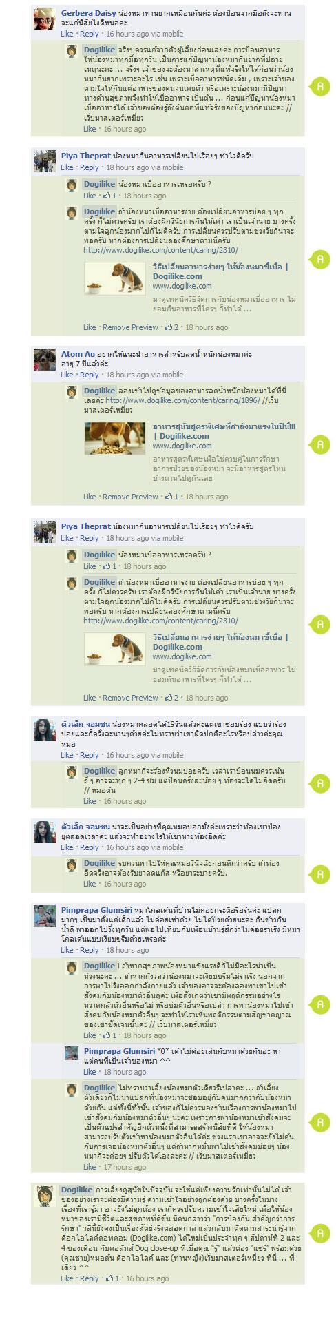 dogilke, dog close-up, หมอ, สัตวแพทย์, คำถาม, สุนัข, ข้อสงสัย, หมอต้น, พี่มะเหมี่ยว, infographic, บทความ, dog close-up, infographic,กำจัดเห็บม, พิษสุนัขบ้า, ขี้เรื้อน, ฉีดวัคซีน