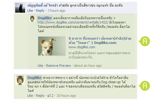 dog close-up, infographic, dog infographic, หมา, สุนัข, ขน,  สุขภาพขน, ดูแลสุนัข, สุขภาพ, หนาว , อากาศหนาว, ผ้าห่ม, หิมะ, โรคหลอดลม, ไข้หัด, ลำไส้อักเสบ, อุณภูมิ