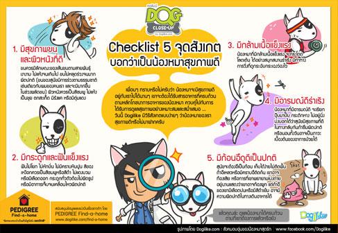 dog close-up, infographic, กระดูกและฟันแข็งแรง , สุขภาพดี, มีกล้ามเนื้อแข็งแรง, มีอารมณ์ดีร่าเริง, มีก้อนอึดูดีเป็นปกติ, มีสุขภาพขนและผิวที่ดี, pedigree, find-a-home, เพดดิกรี, โครงการหาบ้านให้สุนัข