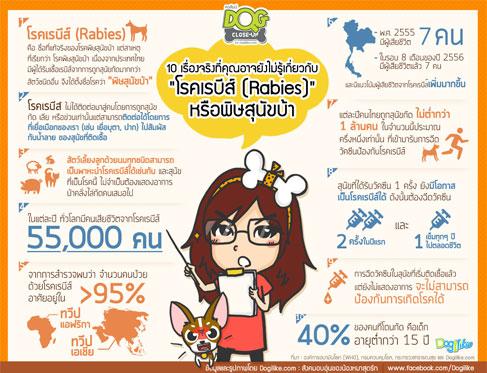 dog close-up, infographic, dog infographic, หมา, สุนัข, โรคเรบีส์ (Rabies) ,โรคพิษสุนัขบ้า, 10 เรื่องจริง