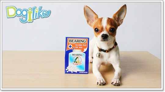 Dogilike.com :: Review : Bearing Calcium Plus А╓еЮ╚убайскця╨╧Им╖кар