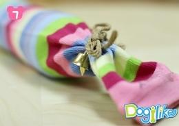 Dogilike.com :: в╟┤р┬ч╣д┼╥┬├щ═╣