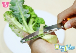 Dogilike.com :: ปลาทูสารพัดผัก