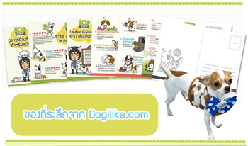 Dogilike.com :: ตุ๊กตา Halloween