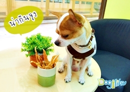 Dogilike.com :: สแน็คไก่ กร๊อบกรอบ
