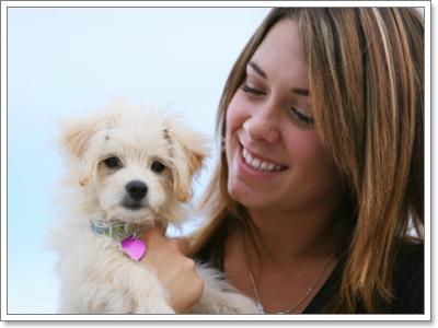 Dogilike.com :: เปลี่ยนชื่อน้องหมาอย่างไร ให้เขาจำได้