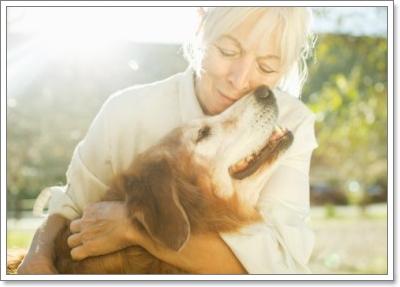 Dogilike.com :: จะรู้ได้อย่างไรว่าช่วงวัยของน้องหมากำลังเปลี่ยนแปลง