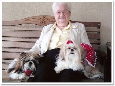 Dogilike.com :: รู้หรือไม่? น้องหมาสายพันธุ์ไหนที่เหมาะกับผู้สูงอายุ