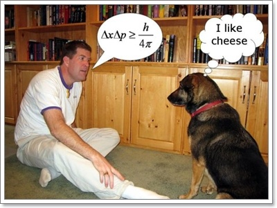 Dogilike.com :: ไขคำถามคาใจ ... น้องหมาสามารถฟังคำสั่งได้หลายภาษาจริงหรือ
