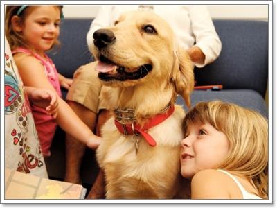 Dogilike.com :: 10 เหตุผลที่คนเลือกเลี้ยงน้องหมาพันธุ์ใหญ่