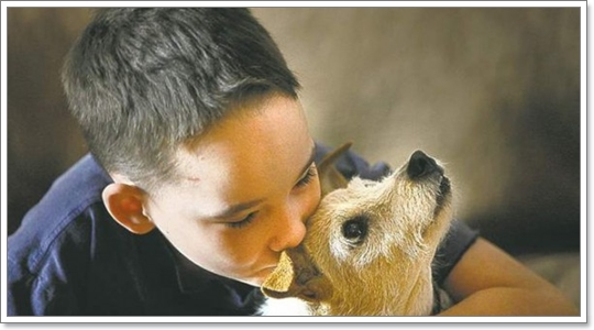 Dogilike.com :: ชีวิตที่มีน้องหมา....เปลี่ยนแปลงสิ่งใดในตัวเราบ้าง?