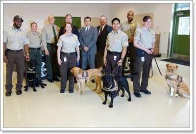 Dogilike.com :: สหรัฐฯ ฝึก 4 สุนัขดมกลิ่น มุ่งลดการนำเข้าสัตว์ป่าผิดกฏหมาย