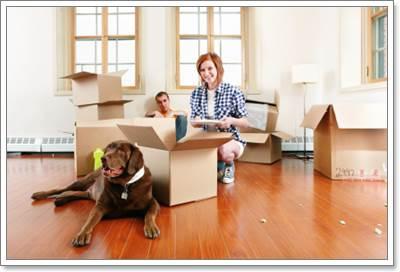 Dogilike.com :: รับมือปัญหาก่อนพาน้องหมาย้ายบ้านใหม่