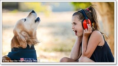 Dogilike.com :: ทุบสถิติ! Charlie น้องหมาที่มีเสียงเห่าดังที่สุดในโลก