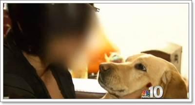 Dogilike.com :: สุนัขนำทางฮีโร! เห่าไล่กลุ่มคนร้ายบุกรุกบ้านเจ้าของตาบอด