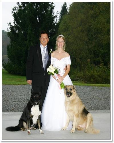 Dogilike.com :: ภาพน่ารักๆ Dog in wedding