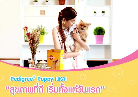 Pedigree Puppy, สุขภาพที่ดี, เริ่มตั้งแต่วันแรก, ลูกสุนัข, โภชนาการลูกสุนัข, อาหารสุนัข, ช่วงวัย,