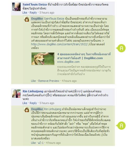 dog close-up, infographic, dog infographic, หมา, สุนัข, ไฮเปอร์, ตื่นตัว, ดื้อ, ไม่เชื่อฟังคำสั่ง,  อินดี้, มีโลกสัวนตัว,ขี้กลัว, วิตกกังวล, บ้าพลัง, เรียกร้องความสนใจ