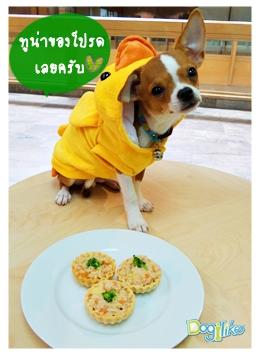 Dogilike.com :: ทาร์ตทูน่ารวมมิตร