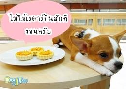 Dogilike.com :: ทาร์ตไส้กรอก หอมหวน