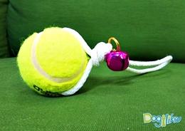 Dogilike.com :: ลูกบอลกรุ๊งกริ๊ง