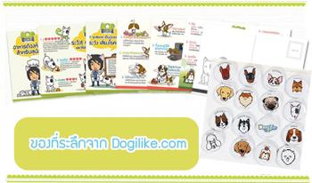 Dogilike.com :: เกรวี่ บานาน่า โรล