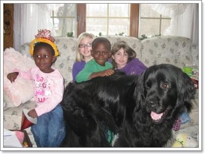 Dogilike.com :: 20 เรื่องจริงสุดทึ่งของน้องหมา ไม่รู้ไม่ได้แล้ววววว!