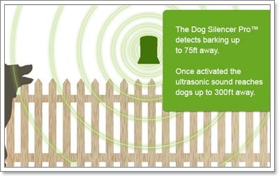 Dogilike.com :: ปรับพฤติกรรมผู้เลี้ยงและน้องหมา ไม่ให้มีปัญหากับข้างบ้าน