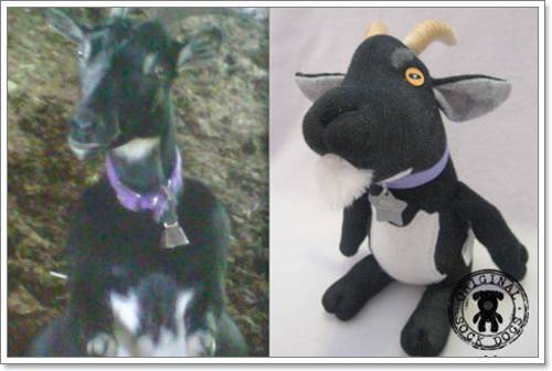 Dogilike.com :: เจ๋ง! หญิงใจดีทำตุ๊กตาถุงเท้าขาย นำเงินช่วยสุนัขในศูนย์พักพิงฯ