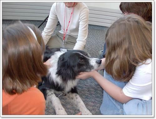 Dogilike.com ::  Dog Loving Kids ปาร์ตี้เฮฮา น้องๆ หมาๆ เติมใจให้กัน