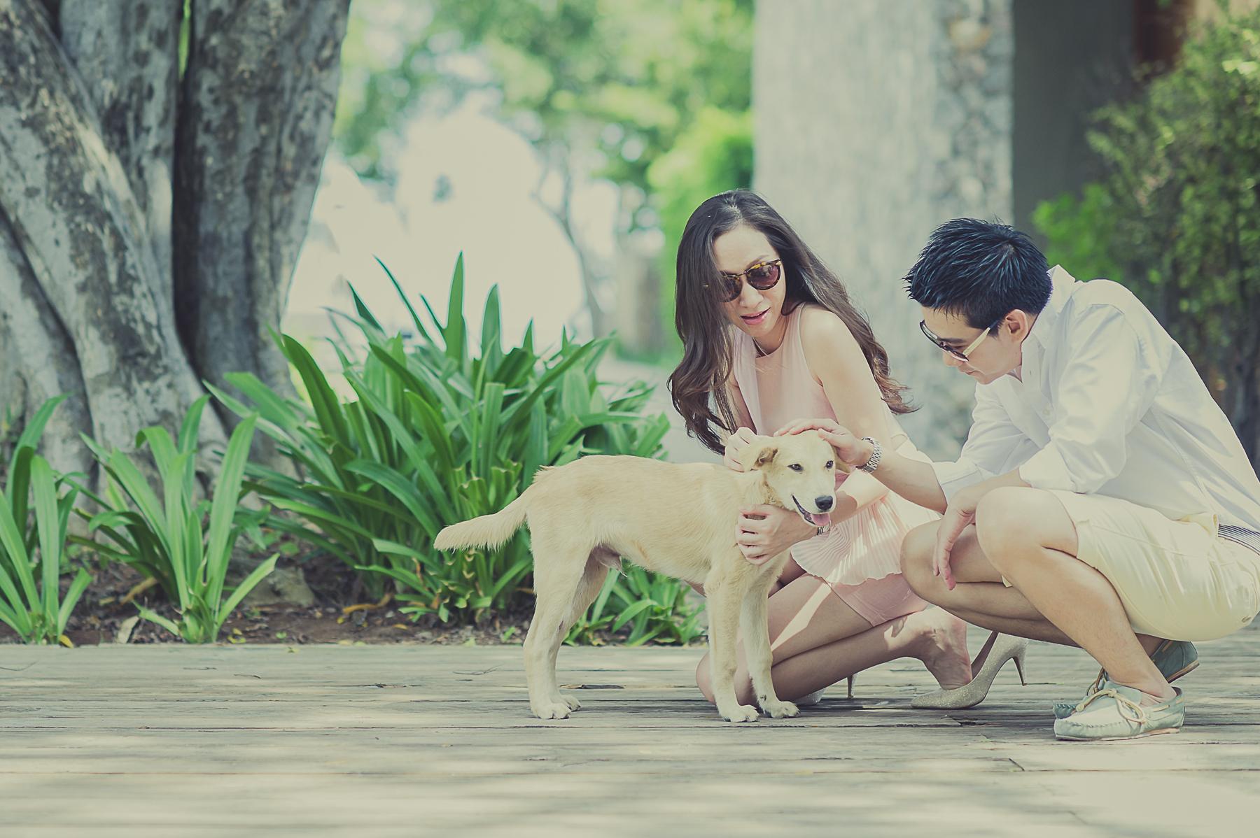 Dogilike.com :: X2 Kui Buri เชิญชวนคนรักสุนัขมาพักผ่อนแบบมีสไตล์ในวิลล่าหรู