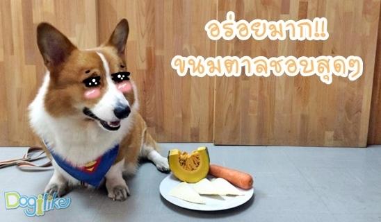 Dogilike.com :: พัฟผักไส้กรอก