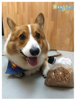 Dogilike.com :: ฝาปิดถุงอาหารอเนกประสงค์
