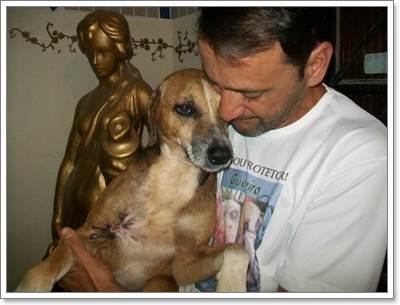 Dogilike.com :: สุดซึ้ง! ชายใจดีช่วยชีวิตสุนัขจรจัดบาดเจ็บสาหัสจนหายดี