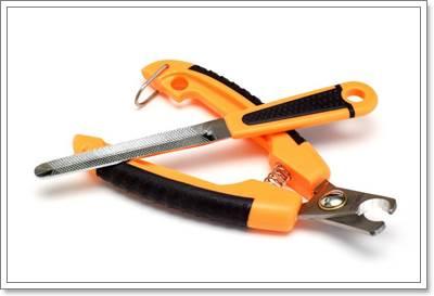 Dogilike.com :: วิธีตัดเล็บน้องหมาง่าย ๆ ที่ใครก็ทำได้!