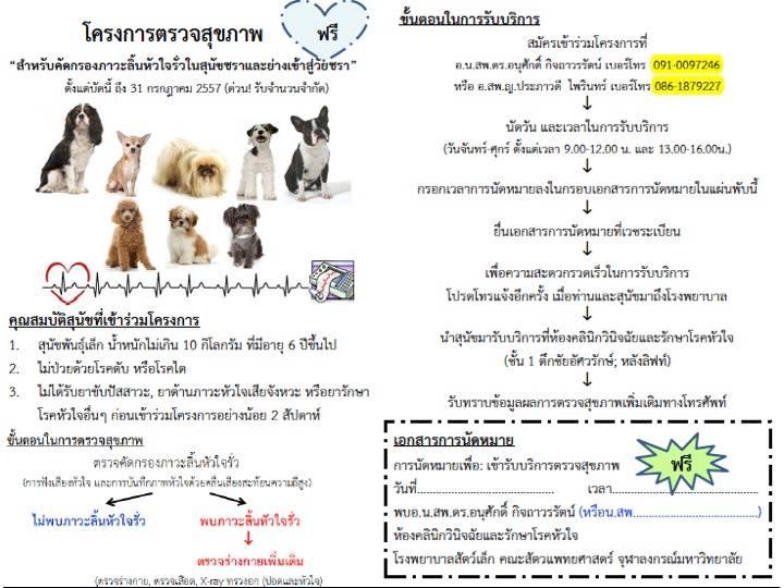 Dogilike.com :: ตรวจสุขภาพสุนัขชราฟรี !!  @โรงพยาบาลสัตว์เล็ก จุฬาฯ