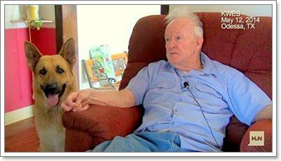 Dogilike.com :: ฮีโร! สุนัขแสนรู้ช่วยชายสูงวัยตาบอดจากบ้านไฟไหม้