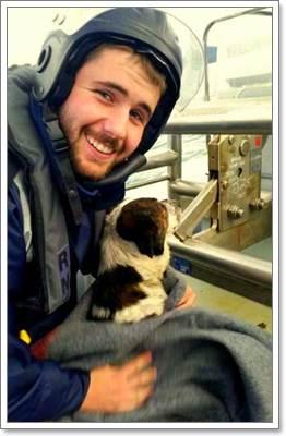 Dogilike.com :: ชื่นชม! ทหารเรือช่วยชีวิตสุนัข หลังติดพายุลอยอยู่กลางทะเล
