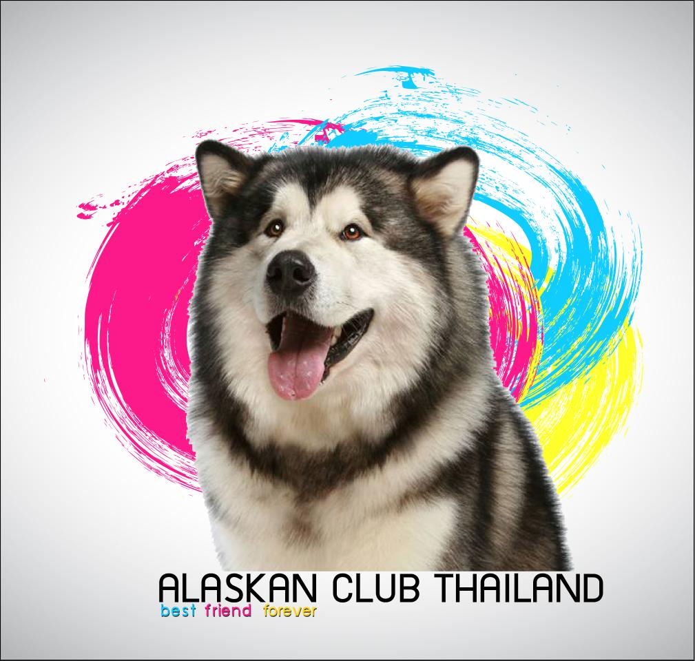 Dogilike.com :: รวมพล อลาสกันมาลามิวท์ @Thailand International Dog Show 2014