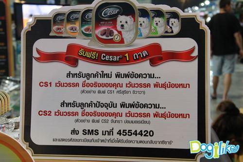 Dogilike.com :: พาทัวร์งาน Thailand International Dog Show 2014 #1