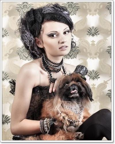 Dogilike.com :: น้องหมากับภาพถ่ายสุดวิทเทจ