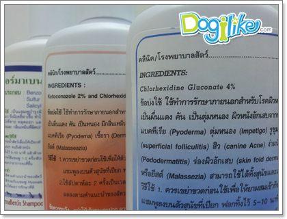 Dogilike.com :: แชมพูยารักษาโรคผิวหนังของสุนัขมีอะไรบ้าง