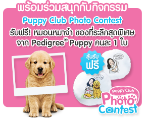 PUPPY CLUB PHOTO CONTEST