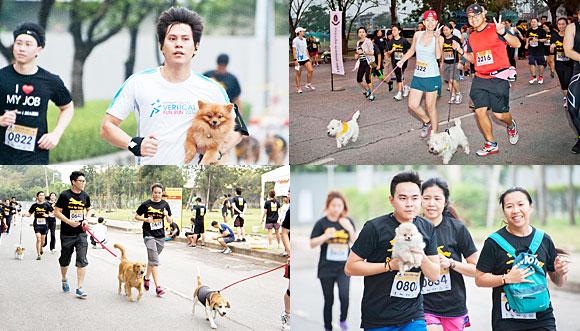 run, run for dog, dog, pedigree,dogilike, วิ่งเพื่อหมา, น้องแสนดี, find a home,อาหารสุนัข, วิ่งมาราธอน, น้องหมา,หาบ้าน, อุปการะ สุนัข, บ้านรักหมาศาลายา, วิ่ง, ช่วยหมา, บรรยากาศกิจกรรม, บรรยากาศ