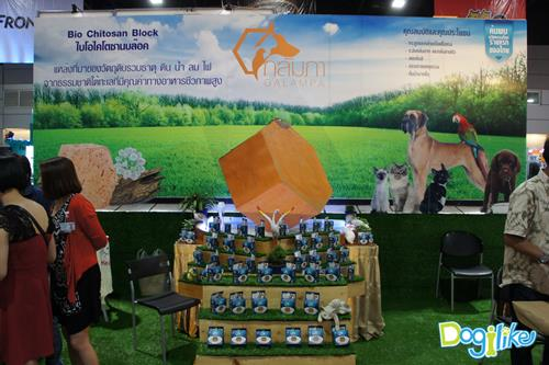 Dogilike.com :: Dogilike พาทัวร์งาน Thailand International Dog Show 2015