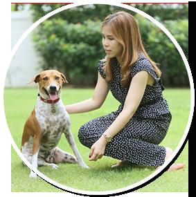 น้องหมา,หมา,สุนัข,เพดดิกรี,โครงการบ้านรักหมาศาลายา,Pedigree Find-a-home,แฮปปี้