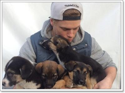 Dogilike.com :: 10 ข้อดี! ที่คุณอาจนึกไม่ถึงเมื่อรับเลี้ยงหมาไร้บ้าน